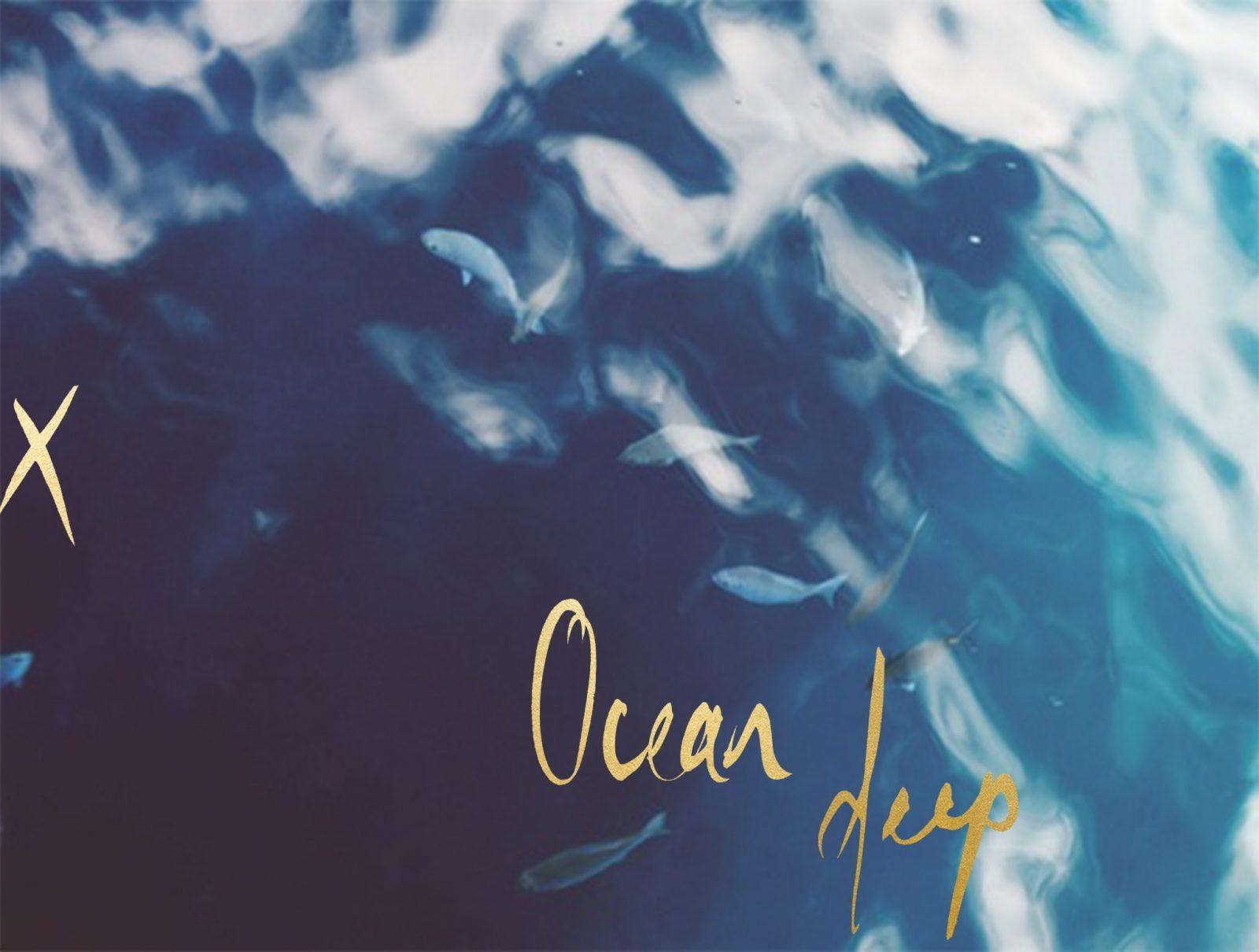 OceanDeepX