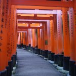 Quick guide to Kyoto- Where to stay, what to do, where to eat!