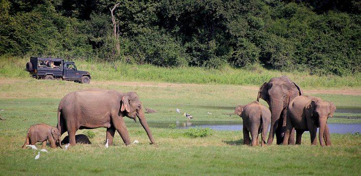 Sri Lanka 10 Itinerary