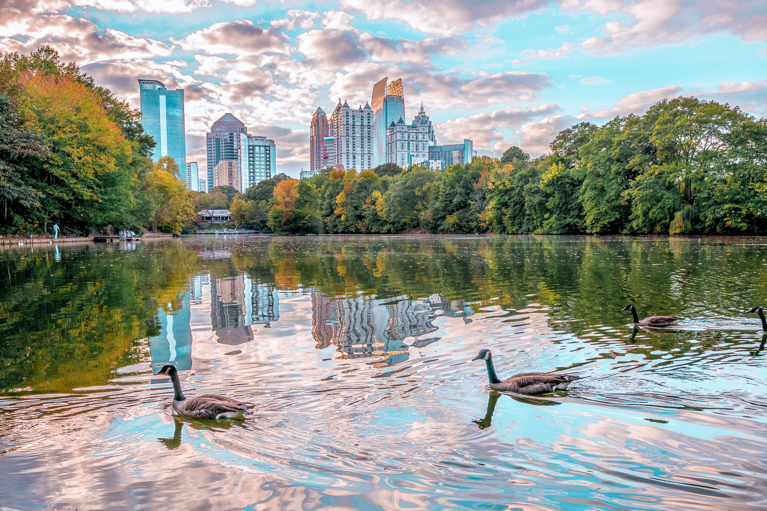 Piedmont Park | Outdoor activities in Atlanta